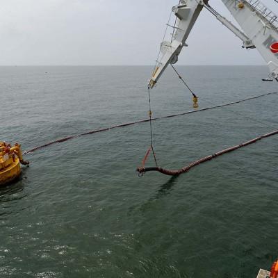 FPSO system marine hoses